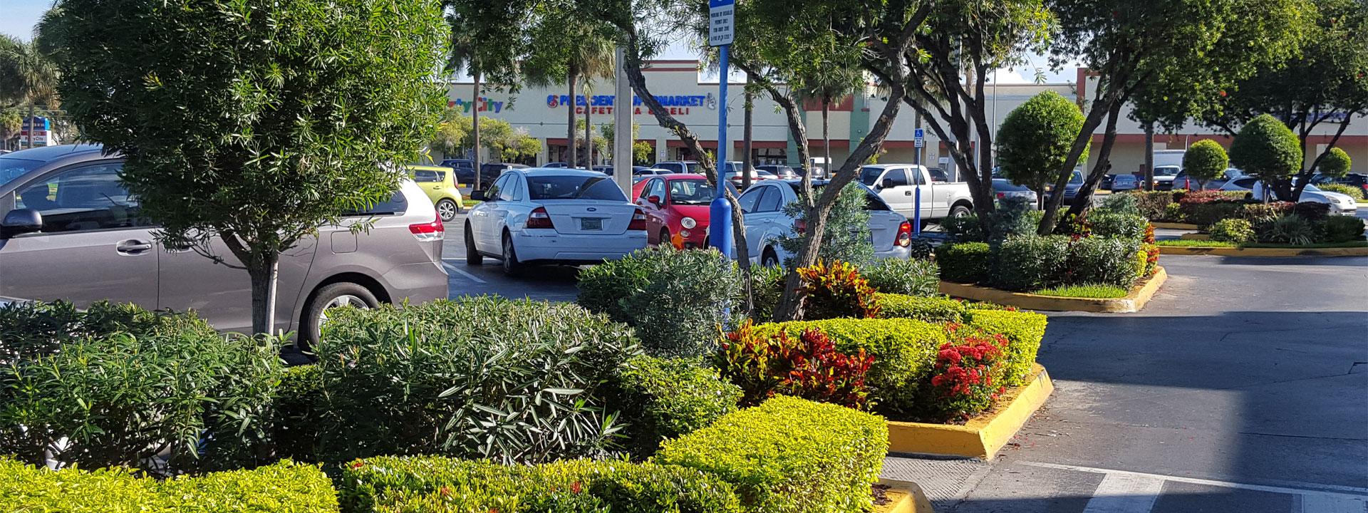 green experts parking